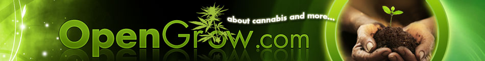 opengrow cannabis grow forum