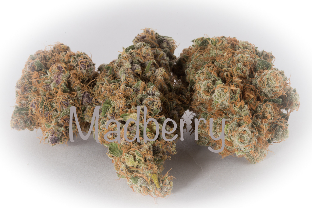 Madberry dried bud full of fruit and coffee flavour