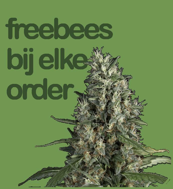 Gratis freebees bij elke zaden bestelling