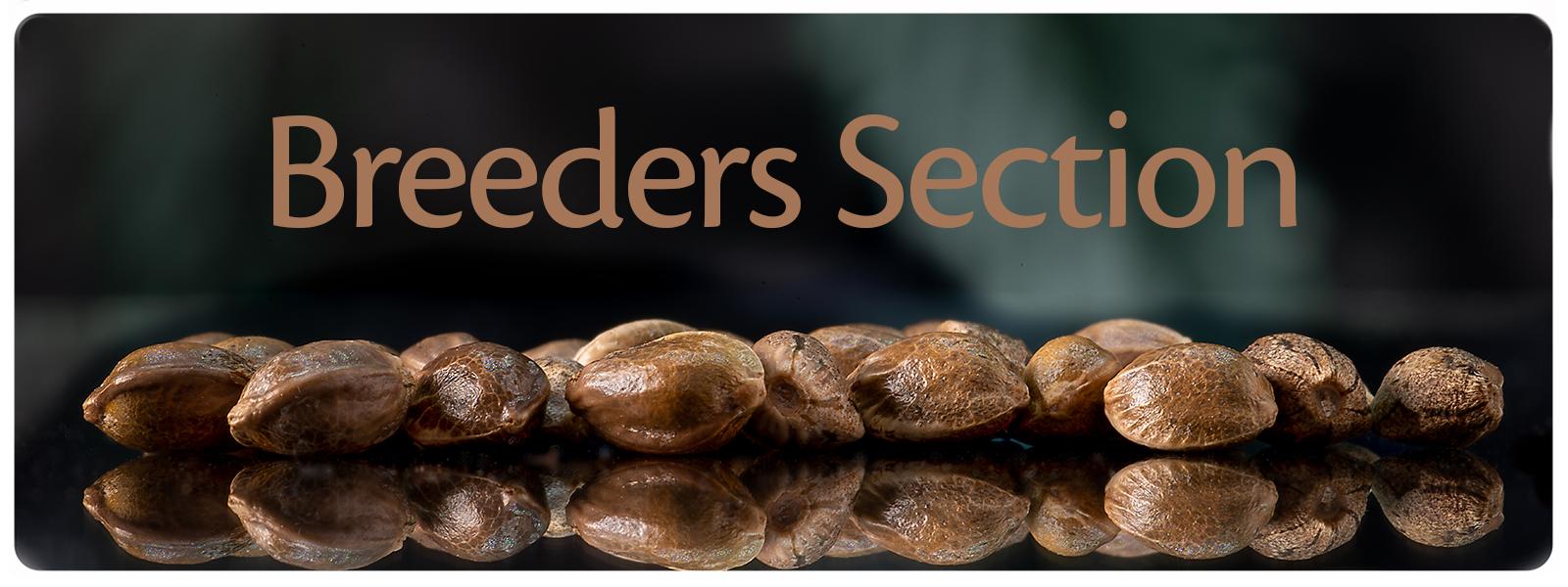 Breeder section for sanniesseeds, dynasty genetics, mephisto genetics, Karma genetics and USC seeds