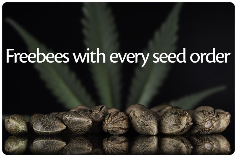 Freebees with every seed order