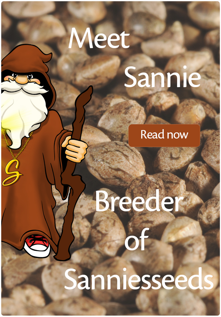Meet Sannie breeder of sanniesshop and founder opengrow.com