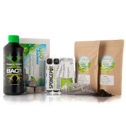 starters kit met cannabis zaden