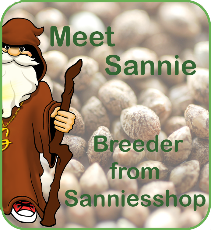 Meet sannie the cannabis seeds breeder
